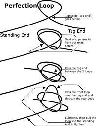loop loop