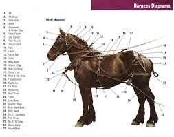 harness part