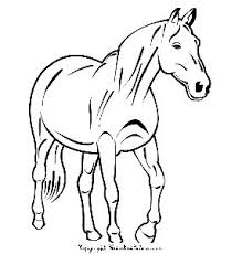 coloring of horses