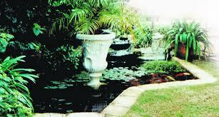 fish pond designs
