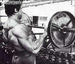 arnold bodybuilding poster