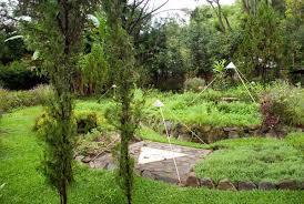 planting gardening