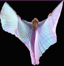 belly dancing isis wings
