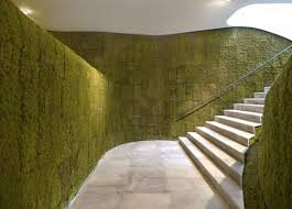 green wallcovering