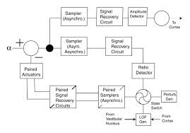 servo diagram
