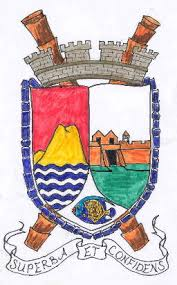 civic arms