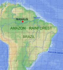 amazon jungle location