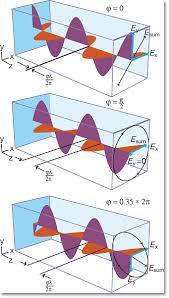 linear polarized light
