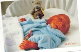 baby at 25 weeks gestation