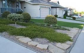 rock lawn