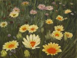 field of flowers photos