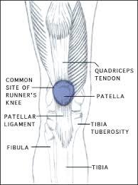 knee runners
