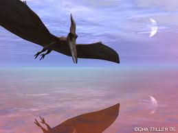 pterodactyl pictures