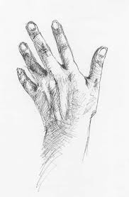 hand drawings of hands