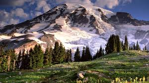mount rainier photos