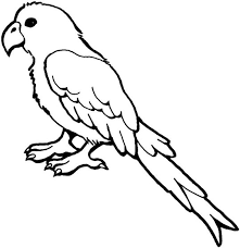 parrot coloring pictures