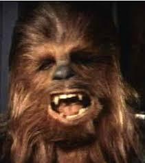 chewbacca wookie