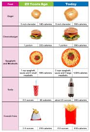 portions of food