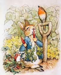 peter rabbit borders