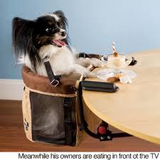 dog high chair