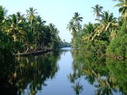 kerala backwaters india
