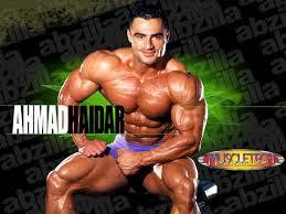 ifbb bodybuilders
