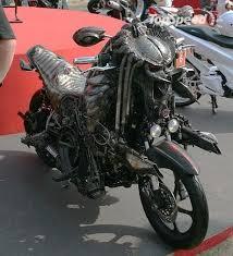 predator bikes