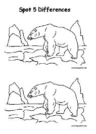 bear sheet