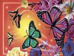 butterfly desktop themes