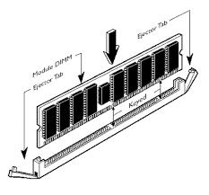 rimm module