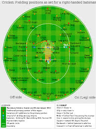 cricket positions map