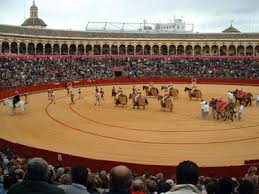 bullfighting seville