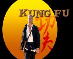 fu kung