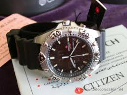 citizen promaster wr100