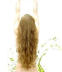 cabelo s