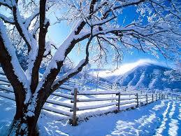 desktop background snow