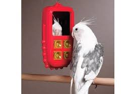 bird cellular phone