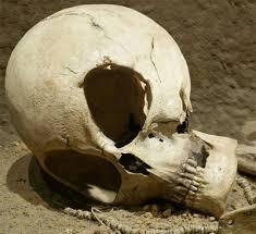 aliens skulls