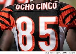 The Cincinnati Bengals are