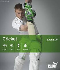 puma cricket bat