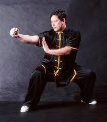 kung fu stance