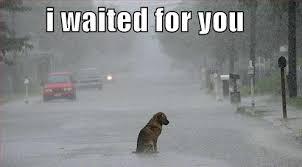 i waited for you