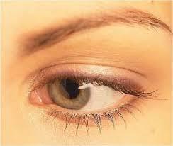 eyebrow gels
