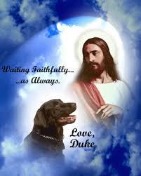 god is dog