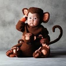 tom arma monkey