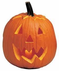 picture of a pumpkin