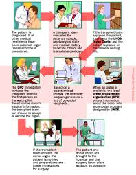 organ transplant patients