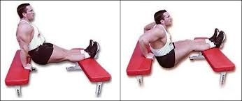 bench dips exercise
