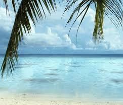 beach screensaver