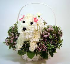 dog flower arrangement